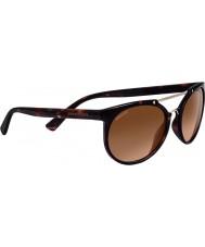 Serengeti 8352 lerici skilpadde solbriller