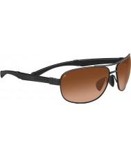 Serengeti Norcia svart drivere gradient solbriller