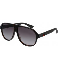 Gucci Mens gg0009s 003 solbriller