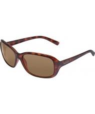 Bolle Molly mørk skilpaddeskjell, mørke brune solbriller