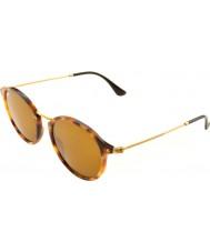 RayBan Rb2447 49 ikoner skilpaddeskall solbriller
