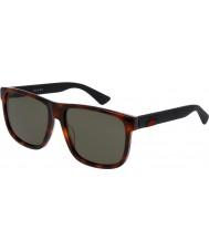 Gucci Mens gg0010s 006 solbriller