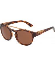 Bolle 12354 boxton tortoiseshell solbriller