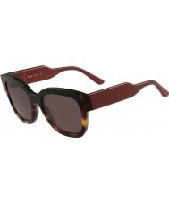 Marni Ladies me604s grønne og Havana solbriller