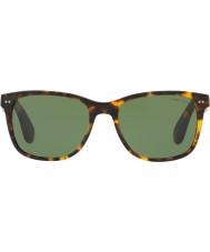 Michael Kors Herrer rl8162p 56 513452 solbriller