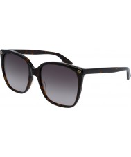 Gucci Ladies gg0022s 003 solbriller