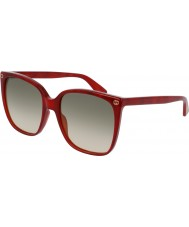 Gucci Ladies gg0022s 006 solbriller