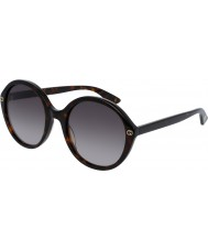 Gucci Ladies gg0023s 002 solbriller
