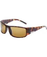 Bolle Kongen mørk skilpaddeskall polarisert sandstein solbriller