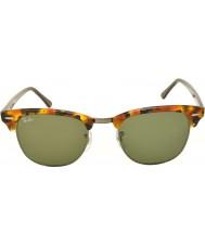 RayBan Rb3016 51 clubmaster oppdaget sorte havana 1157 solbriller