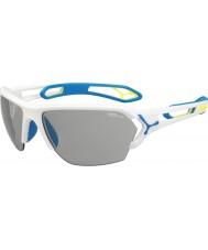 Cebe Cbstl8 s-spor l hvite solbriller
