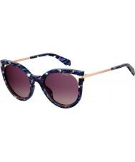 Polaroid Ladies pld 4067 s jbw jr 51 solbriller