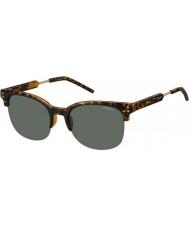 Polaroid Mens pld2031-s NHO rc Havana gull polarisert solbriller