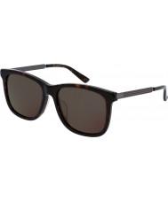 Gucci Mens gg0078sk 004 solbriller
