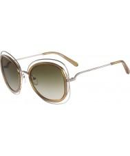 Chloe Ladies ce123s Carlina skinnende gull solbriller