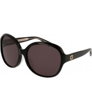 Gucci Ladies gg0080sk 001 solbriller