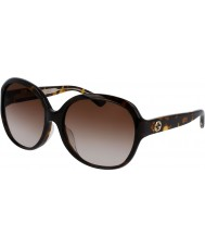 Gucci Ladies gg0080sk 003 solbriller