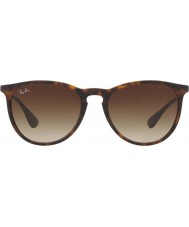 RayBan Rb4171 54 865 13 erika solbriller
