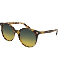 Gucci Ladies gg0091s 003 solbriller