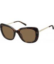 Polaroid Ladies pld4044-s NHO ig Havana gull polarisert solbriller