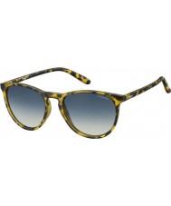 Polaroid Pld6003-n SLG pw Havana gule polariserte solbriller