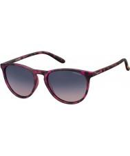 Polaroid Pld6003-n SRR q2 havana fuchsia polariserte solbriller