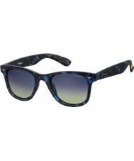 Polaroid Pld6009-nm sek Z7 Havana blå polariserte solbriller