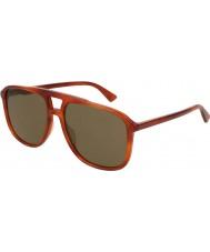 Gucci Herre gg0262s 002 58 solbriller