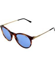 Polo Ralph Lauren Ph4096 50 klassisk stil stripete havana 500772 solbriller