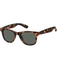 Polaroid Pld6009-ns sog rc Havana oransje polarisert solbriller