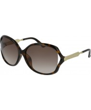 Gucci Ladies gg0076sk 003 62 solbriller