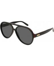 Gucci Herrer gg0270s 002 57 solbriller