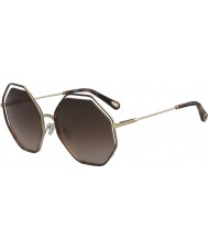 Chloe Ladies ce132s 213 58 valmue solbriller