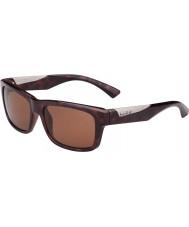 Bolle Jude skinnende skilpaddeskall polarisert a-14 solbriller