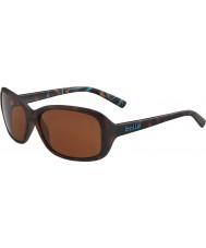 Bolle 12242 molly skilpadde solbriller