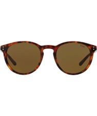 Polo Ralph Lauren Herre ph4110 50 501773 solbriller