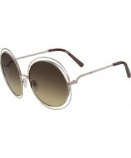 Chloe Ladies ce114s-773 solbriller